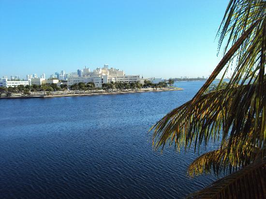 Palmeiras Beach Club at Grove Isle: Vista da janela do quarto 