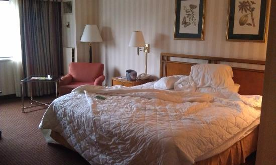 LaGuardia Plaza Hotel - New York: Large comfortable room