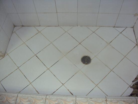Hongos y suciedad general en el piso de la ducha picture - Eliminar hongos ducha ...