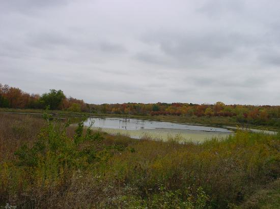 Shabbona Lake State Park: lake