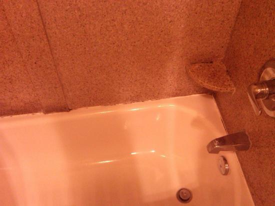 كانتري إن آند سويتس باي كارلسون ألباني: Nasty Mold throughout.....If you like dirty moldy bathrooms this is for you! 