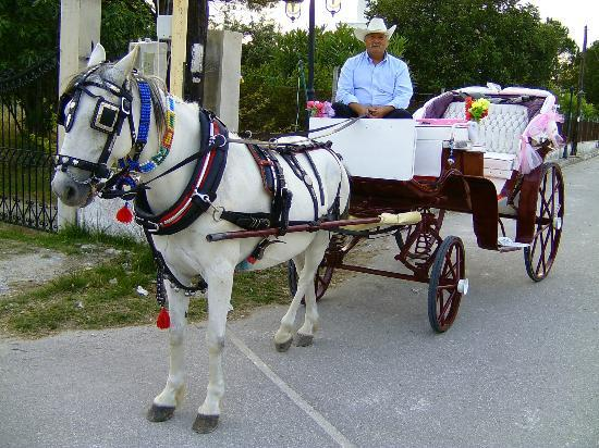 Alykanas Village Hotel: Horse and cart transport