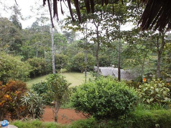 Amani Forest Camp (Emau Hill): View from Restaurant area