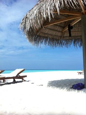 Sun Island Resort and Spa: sable magnifique