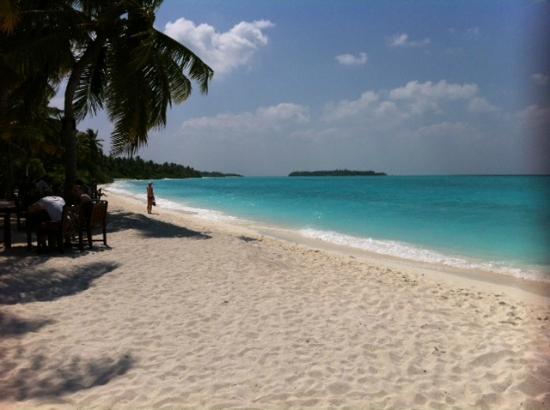 Sun Island Resort and Spa: plage