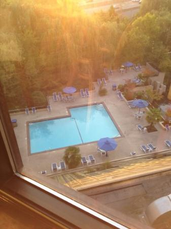 Hilton Bellevue: pool view.