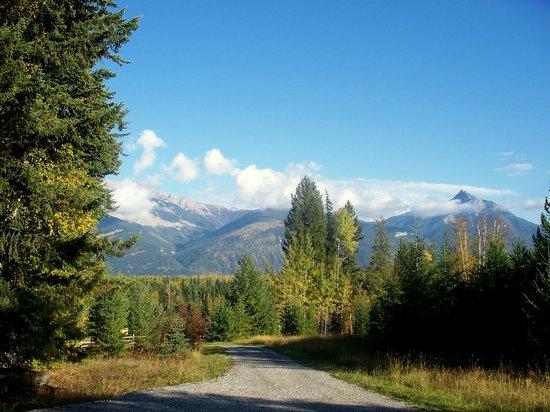 Golden Larches Bed & Breakfast : Driveway and the View