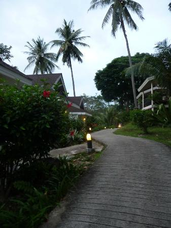 Phi Phi Bayview Resort: Weg zur Rezeption