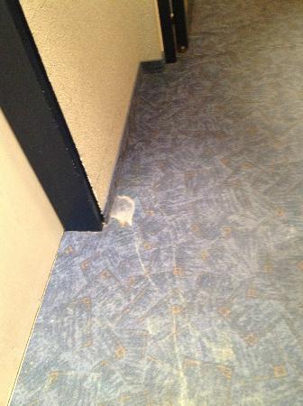 Räter-Park Hotel: Stained hallway carpet