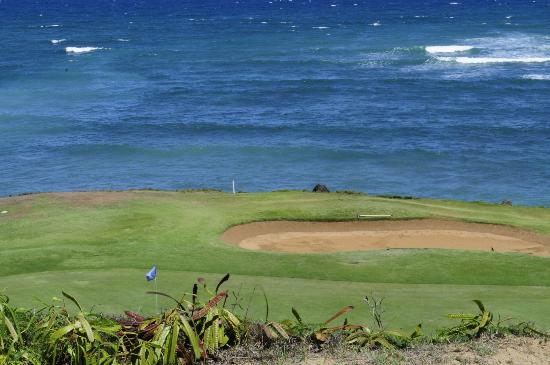 Waiehu Golf Course: Views from the Course