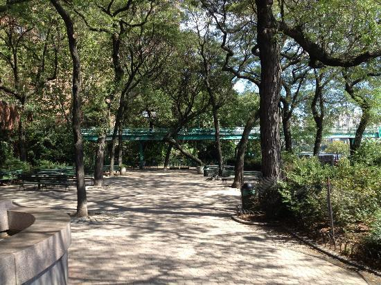 Peter Detmold Park 7