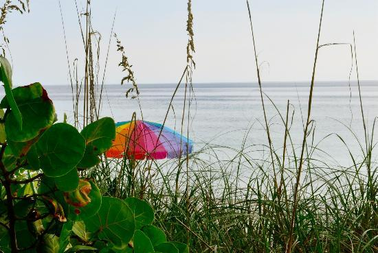 Harrington House Beachfront Bed & Breakfast: Fun seating on the beach