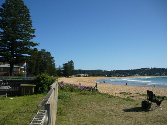 Houses backing on to Avoca Beach Taken from Life Saving Club.Community orientated locals