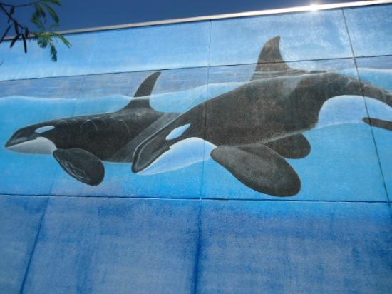 Whaling Wall: 1 of 3 sides