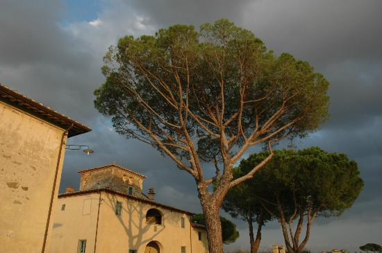 Cortona Resort - Le Terre dei Cavalieri: Hotel at sunset