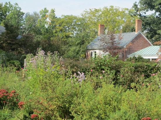 Gardens outside Chatham House - Picture of Chatham Manor ...