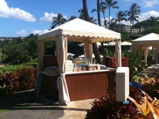 Four Seasons Resort Maui at Wailea: Sunscreen anyone?