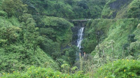 Road to Hana Tours : More Falls
