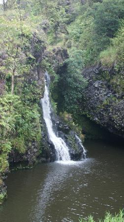 Road to Hana Tours : Falls