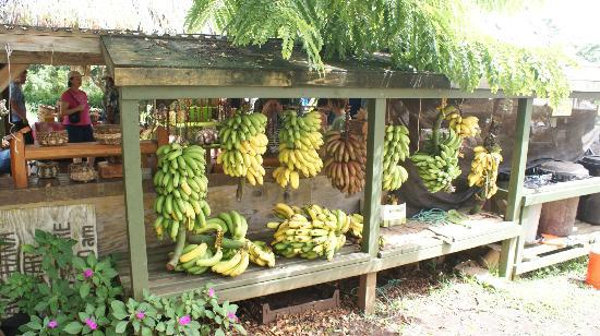 Road to Hana Tours: Fruit stand