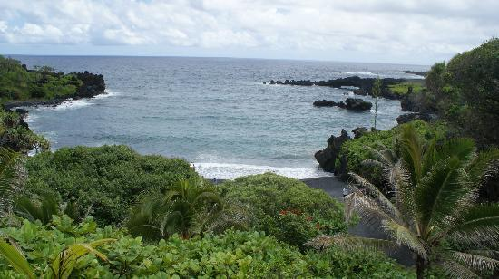Road to Hana Tours : Black sand beach