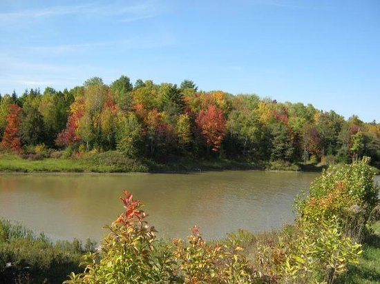 Fort Creek Conservation Area : The lake