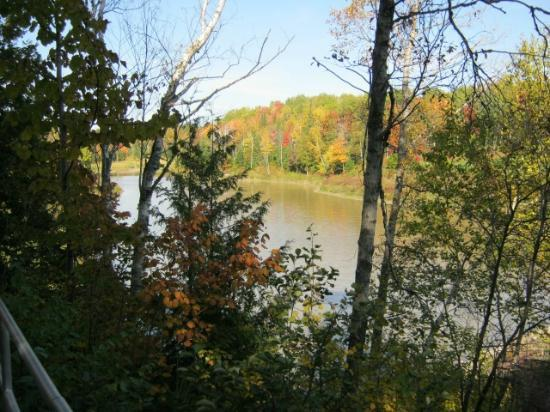 Fort Creek Conservation Area : From the paved trail