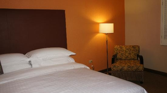 Sheraton Old San Juan Hotel: Sitting Area