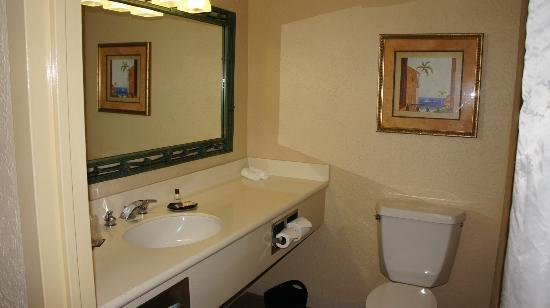 Sheraton Old San Juan Hotel: Bathroom