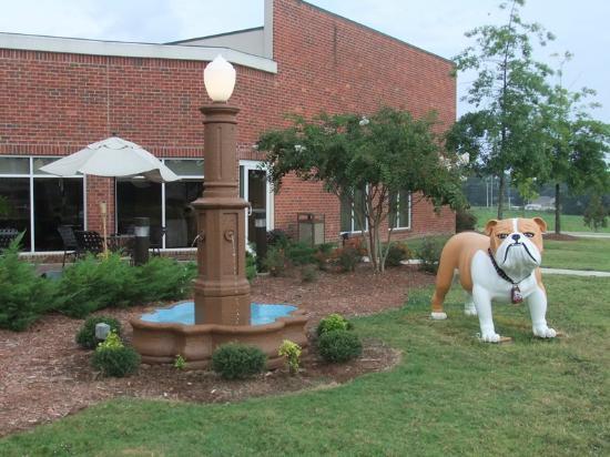 hilton garden inn starkville outside of restaurant with bulldog mascot - Hilton Garden Inn Starkville Ms