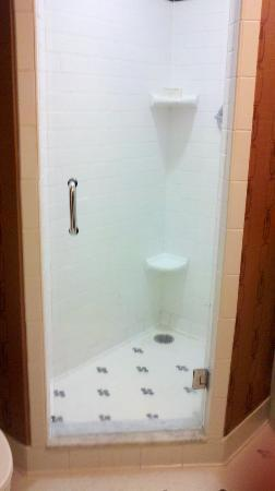Hilton Baton Rouge Capitol Center: Tiny shower with no tub