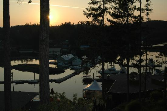 Sunshine Coast Resort Hotel & Marina: Painted Boat Resort Spa and Marina at sunset