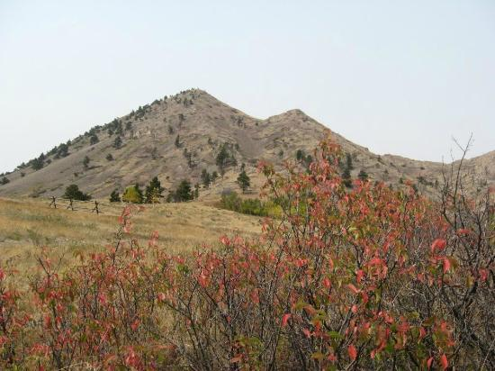 Bear Butte State Park: Fall colors.