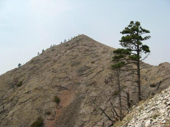 Bear Butte State Park: The summit cone