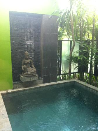 Cicada Luxury Townhouses: Plunge Pool