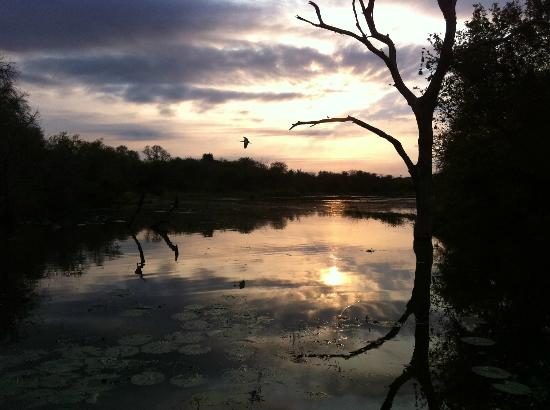 Big Six Tour Safaris: Sunrise shot across a pond at a viewpoint in Kruger Park.