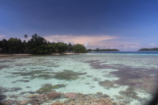 Tavanipupu Island Resort: Crystal waters