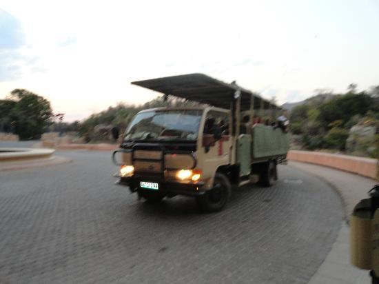 ذا بالاس أوف ذا لوست سيتي: safari truck 