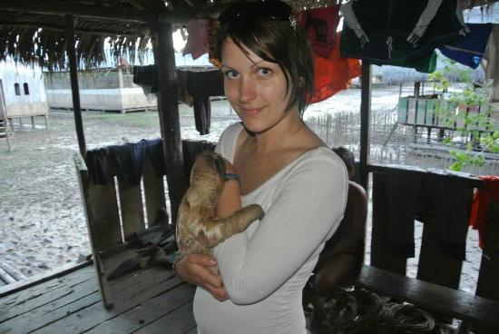 Renaco Lodge: Baby Sloth