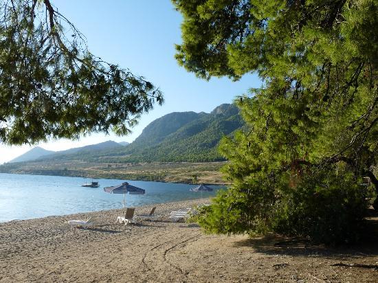 Club Med Gregolimano: la plage de la pinède