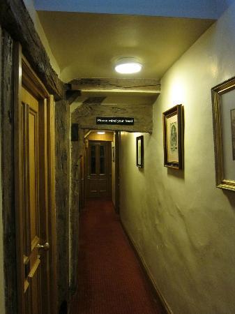 灰狗旅館照片