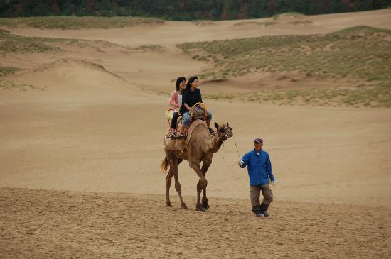 鳥取砂丘, ラクダに乗る人たち