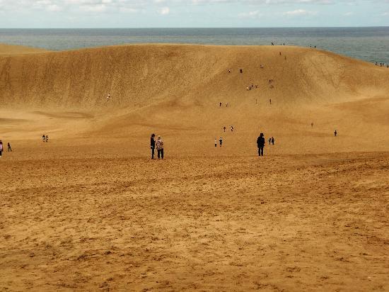 鳥取砂丘, 砂丘へ