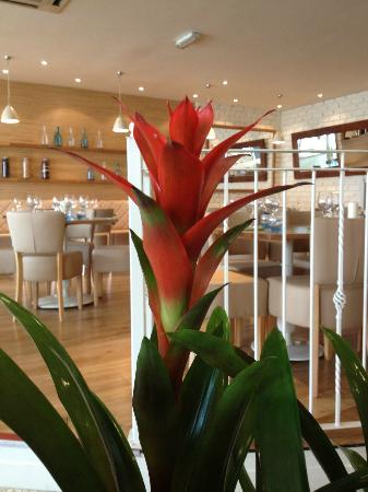 Ego Mediterranean Restaurant - Stockton Heath: Ego Stockton Heath