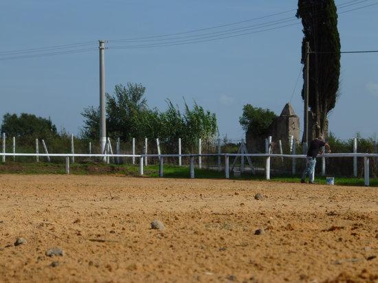 Dakota Ranch: getlstd_property_photo