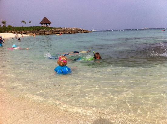 Shangri-La's Mactan Resort & Spa: Snorkelling