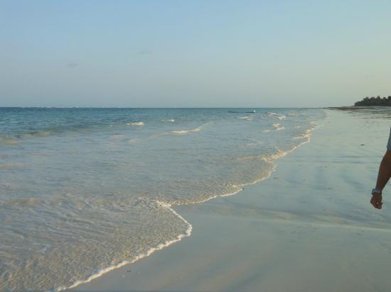 Almanara Luxury Villas: Gorgeous Beach