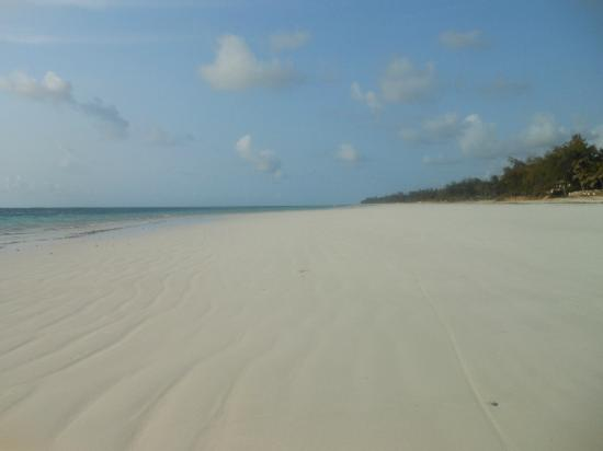 Almanara Luxury Villas: Empty Beach