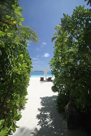 Conrad Maldives Rangali Island : just 2 steps out of our villa and u are on the beach