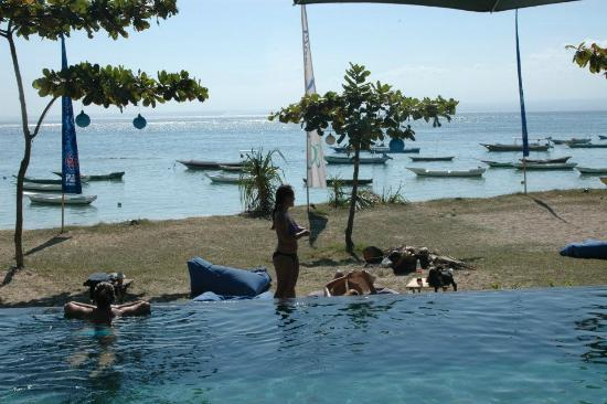 Nusa Lembongan, Indonesien: Tanning on the bean bags with a beer